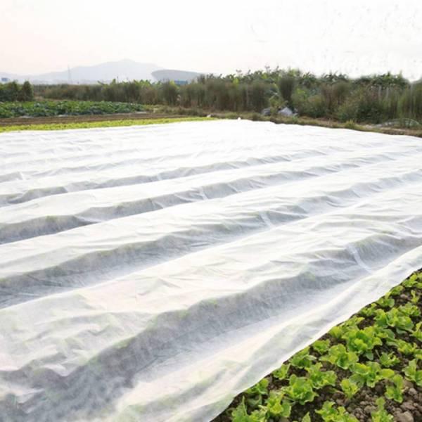 Агроволокно 50 г/м2, 1,6x100м, белое