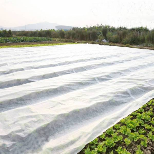 Агроволокно 23 г/м2, 8,5x50м, белое