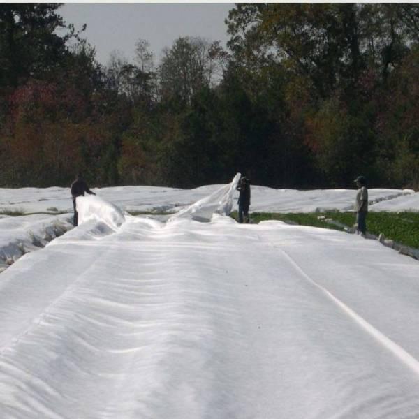 Агроволокно 30 г/м2, 10,5x50м, белое